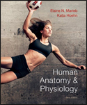 Human Anatomy and Physiology (9th ED) ISBN: 978-0321743268